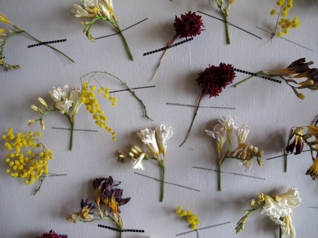 Decorazioni murali con i fiori idea creativa blossom - Decorazione murale ...