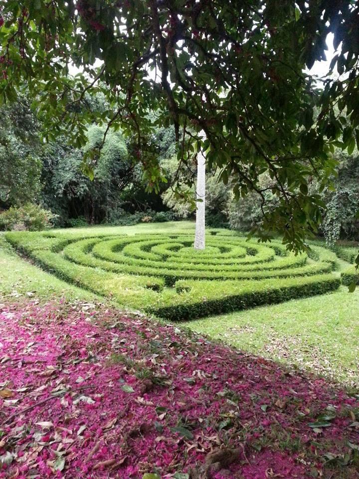 Blossom zine viaggio in Sri Lanka 5