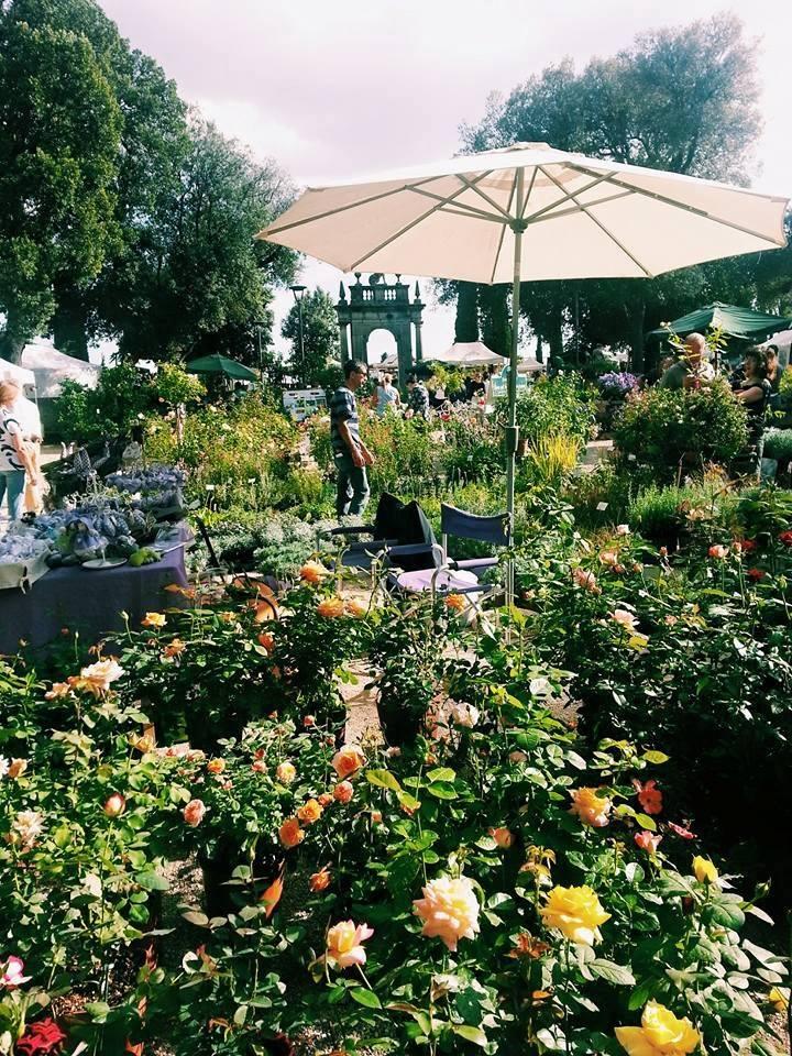 Blossom zine blog Perugia Flower Show 2015 (21)