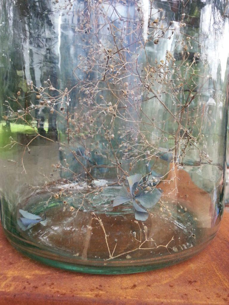 orticolario, blossom zine Uniti da un filo verde progettata da Silvia Ghirelli per lo spazio All'Origine 2.