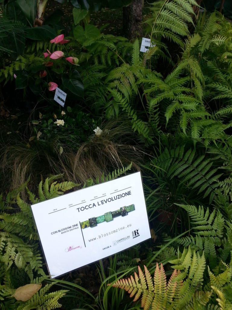 orticolario, blossom zine stand giardino evoluzione 2