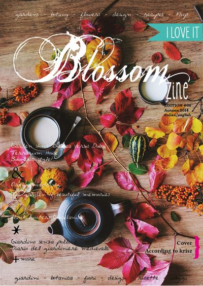 6 autumn issue br