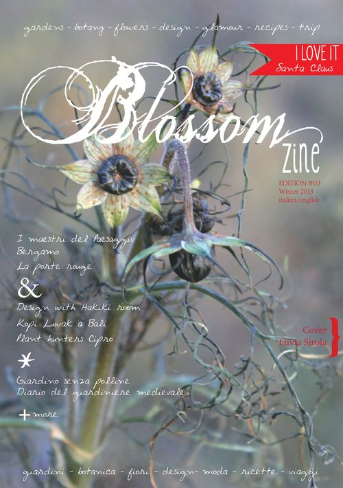 COVER n 3 winter 2013 br