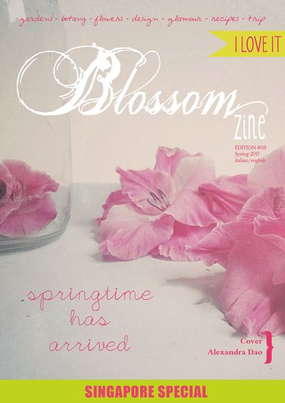 Spring 8 2015 cover bR