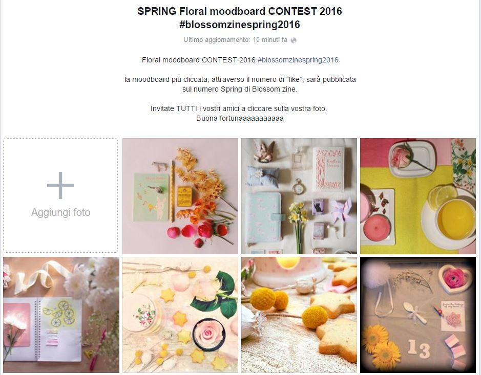 Blossom zine contest cattura album foto grafico1