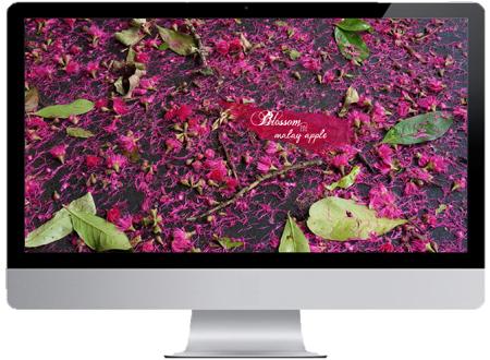 monitor malay Apple