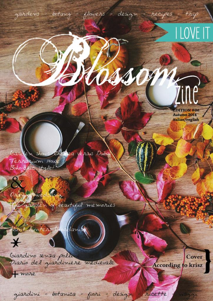COVER Blossom zine 6 HR