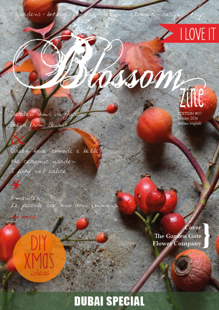 Winter issue Blossom zine  COVER HR