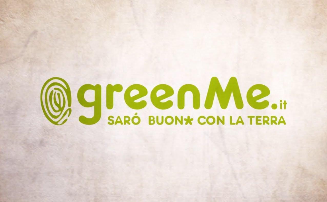 Piante Da Appartamento Greenme.Regole Per Far Vivere Al Meglio Le Piante In Casa 2 Ladies In