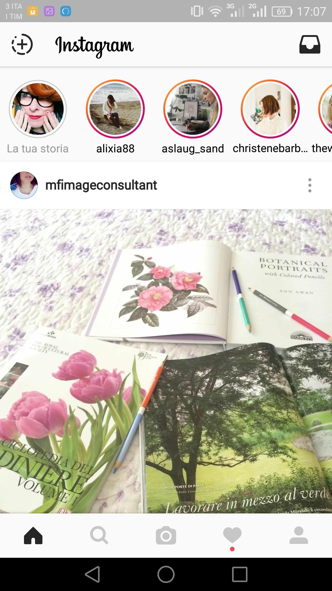 blossom zine instagram stories  (4)