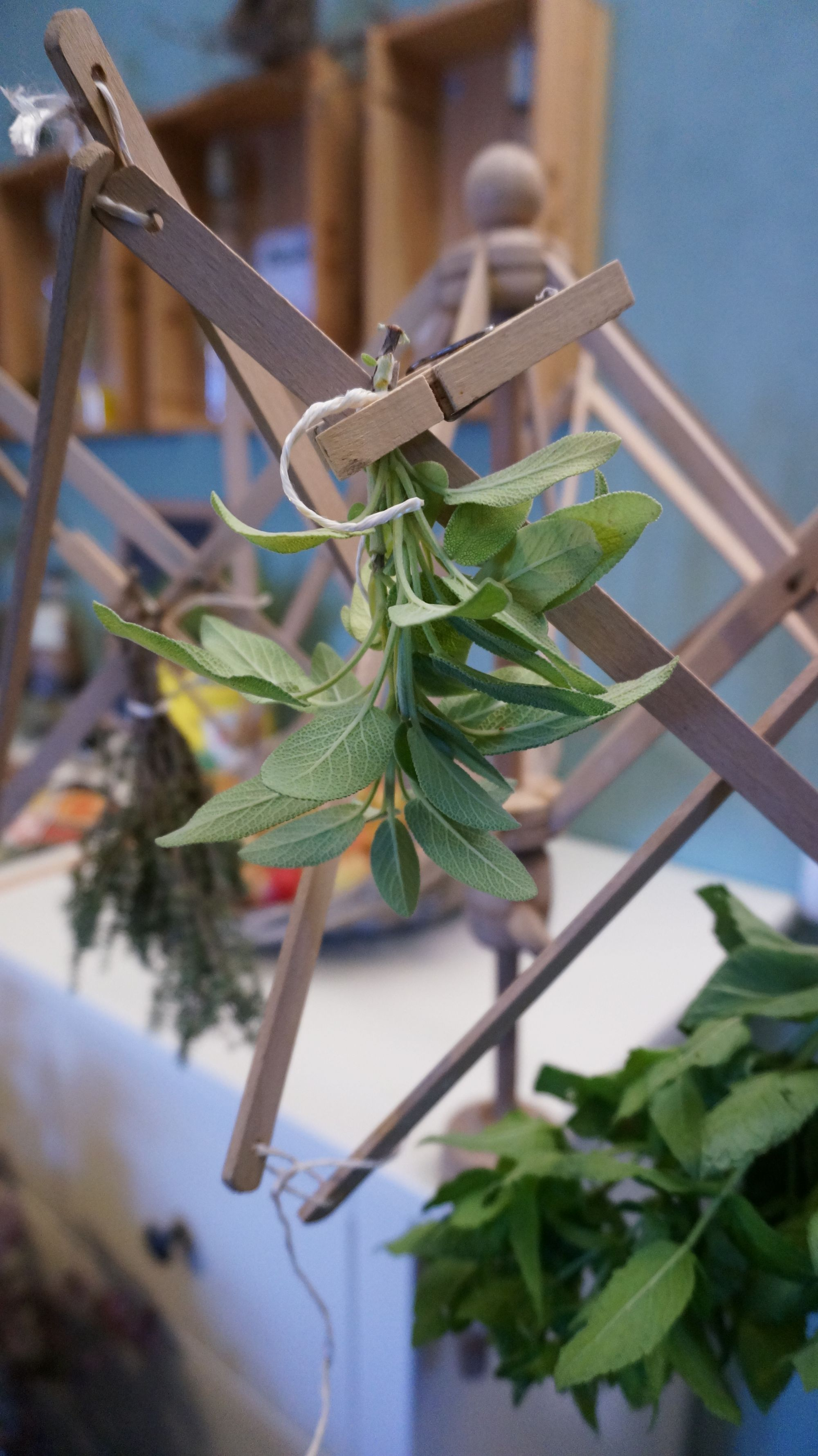 blossom-zine-ricola-essicare-erbe-5