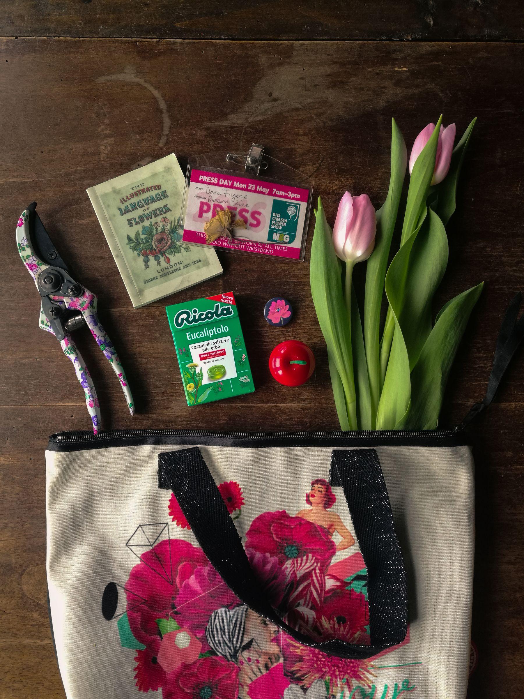 ricola blossom zine borsa donne