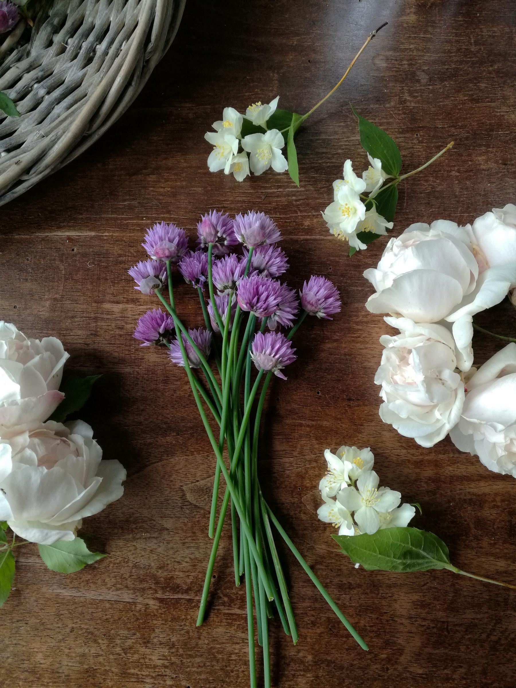 """Philadelphus coronarius Rosa """"Penny lane"""" Allium schoenoprasum"""