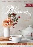 cover 11 blossom zine