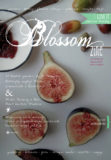 cover 2 blossom zine