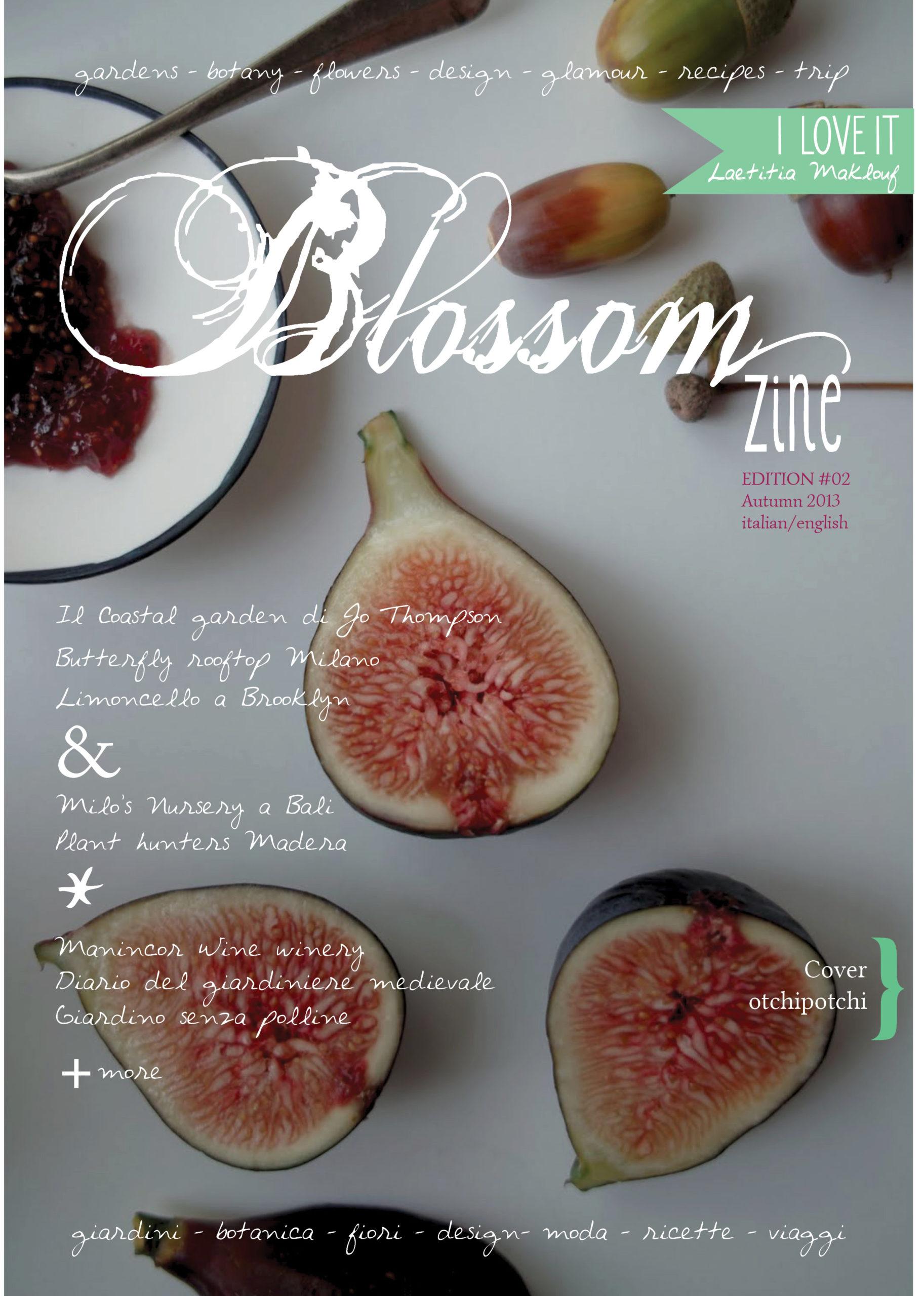 cover 2 blossom zine