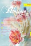 cover 4 spring Blossom zine