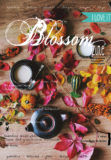 cover 6 Blossom zine