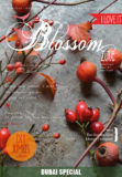 cover 7 blossom zine