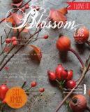 cover 7 blossom zine