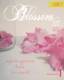 cover 8 blossom zine