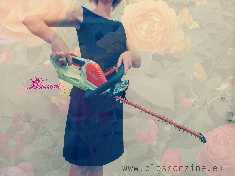 blossom zine tagliasiepi stihl