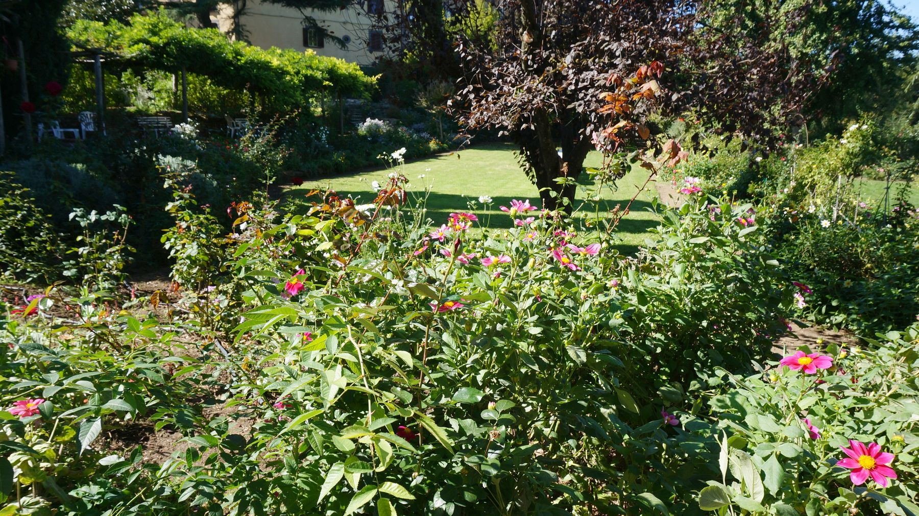 Architettura giardini blossom zine blog for Architettura giardini