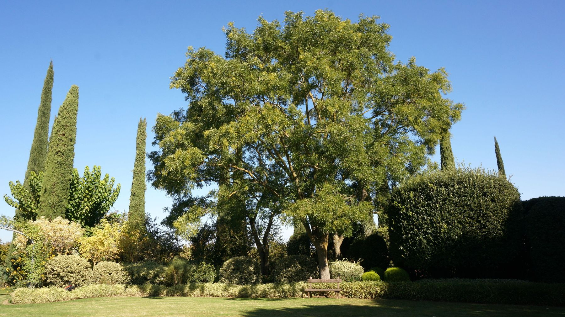 La Torricella Blossom zine viaggio Promo Tuscia (6)