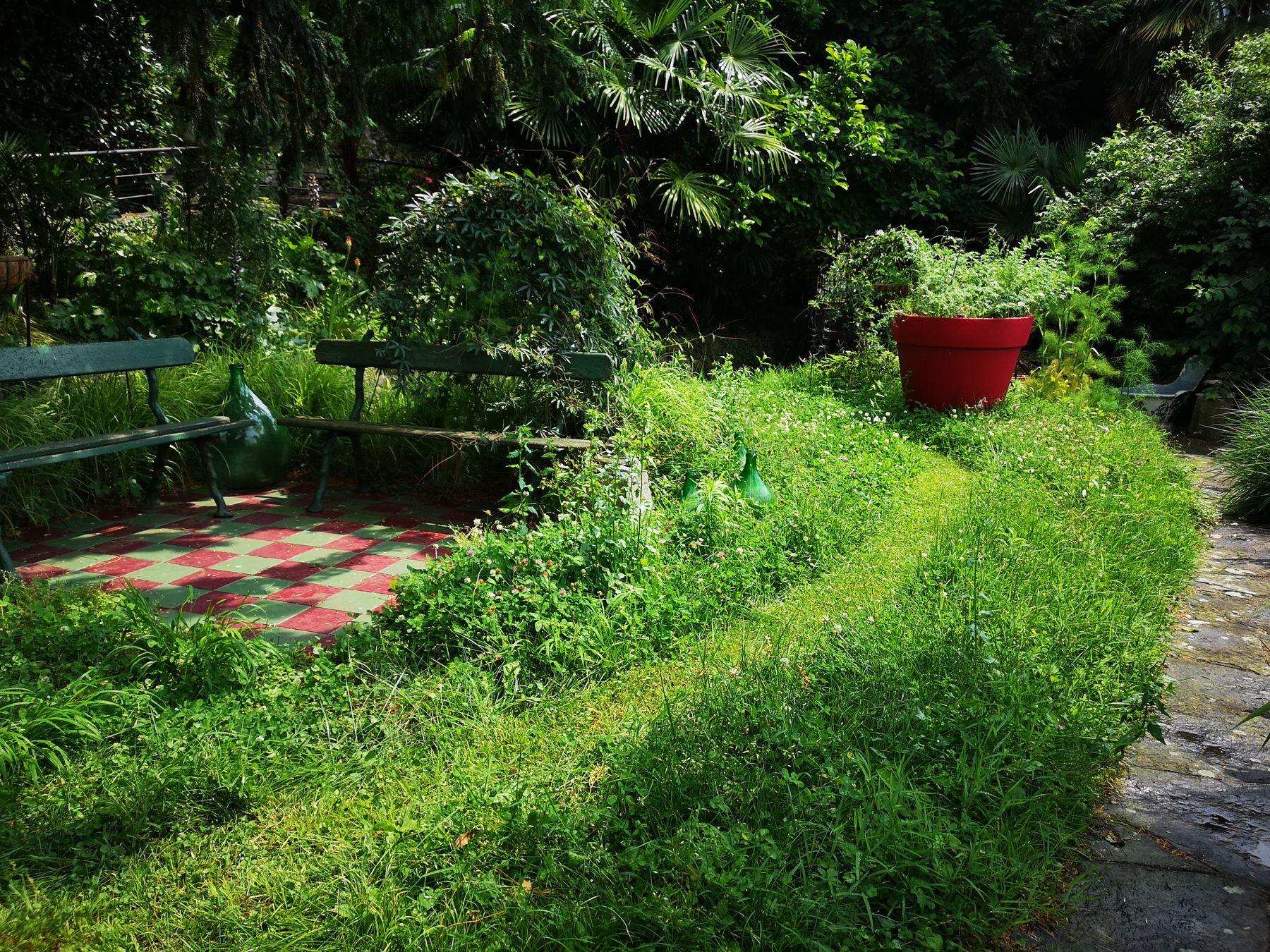 Come creare un sentiero campestre tagliando il prato
