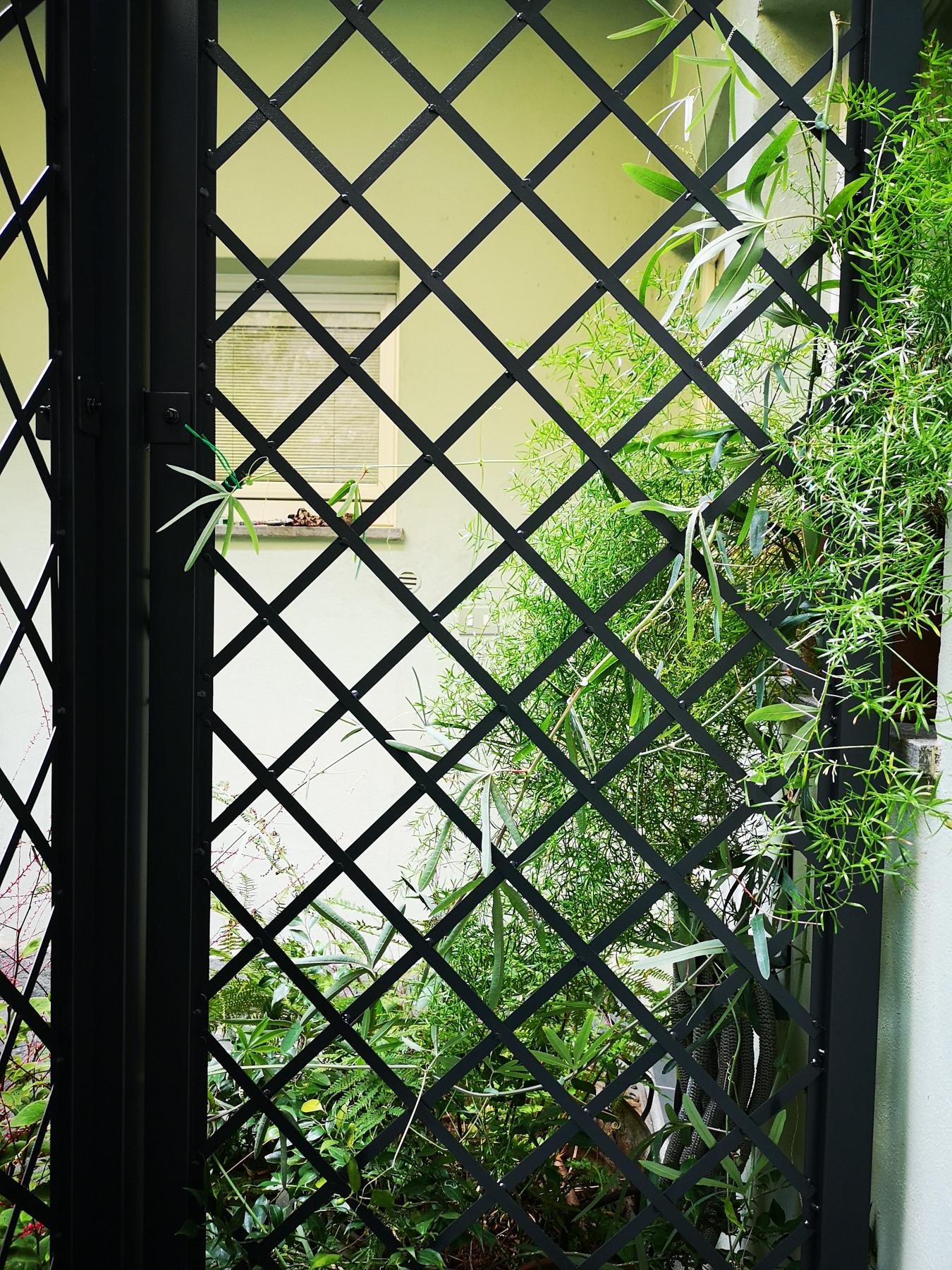 Blossomzine per Verdemax treillage ferro nero