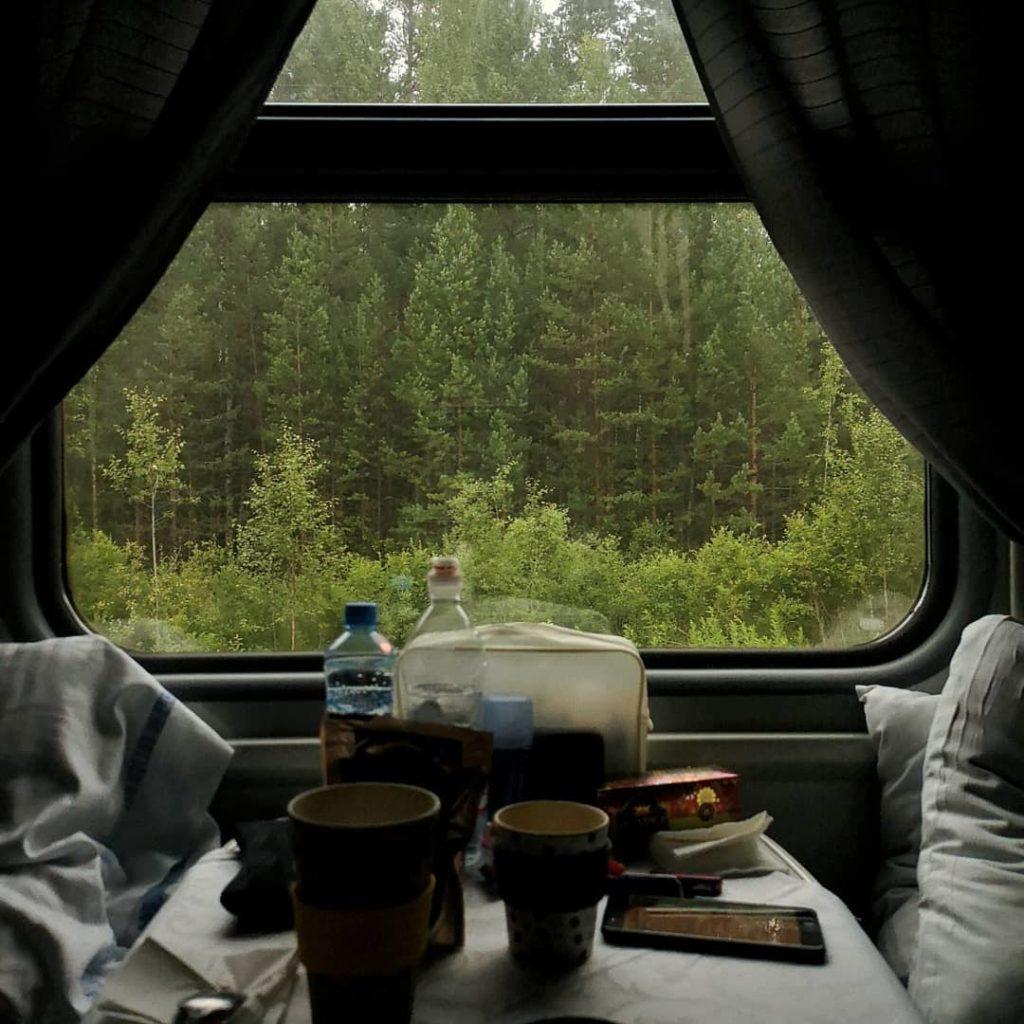 Blossom-zine-transiberiana-prima-classe-cabina-paesaggio