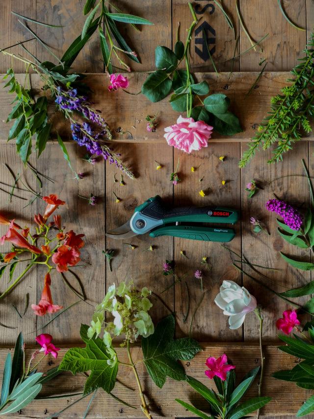foto di Blossomzine per Bosch