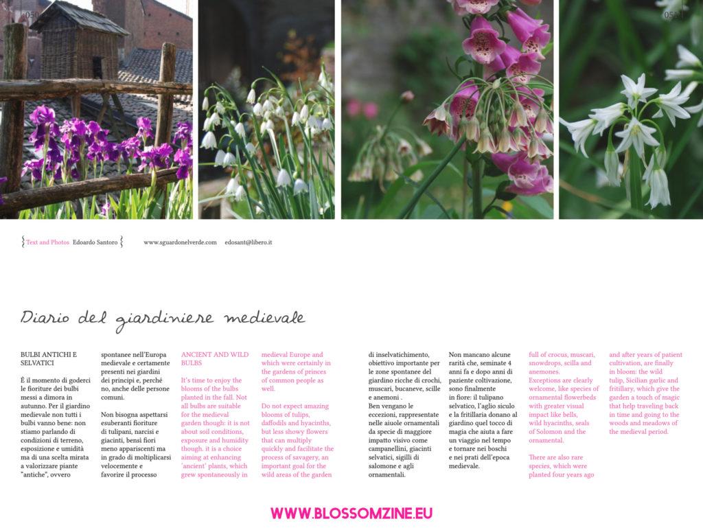 Bulbi antichi e selvatici per il giardino medievale