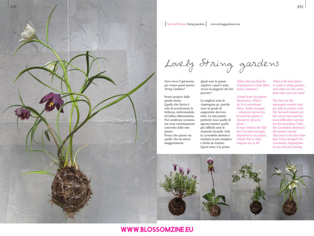 Poetici String Gardens su Blossomzine