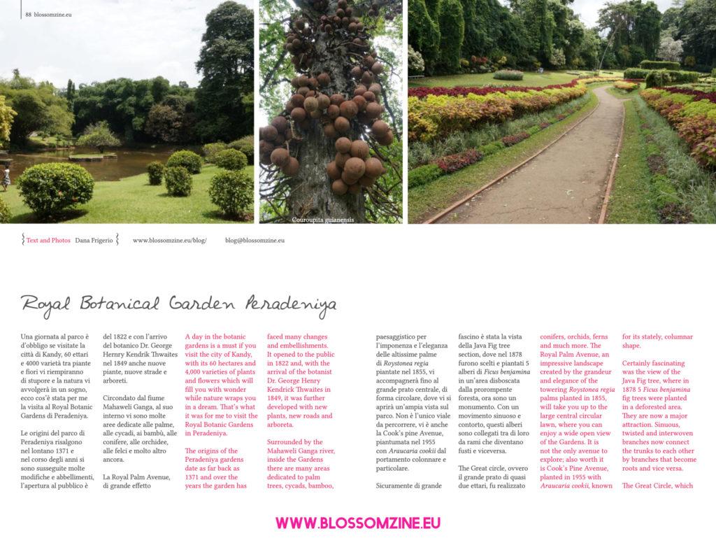 Visita al Royal Botanic Gardens di Peradeniya