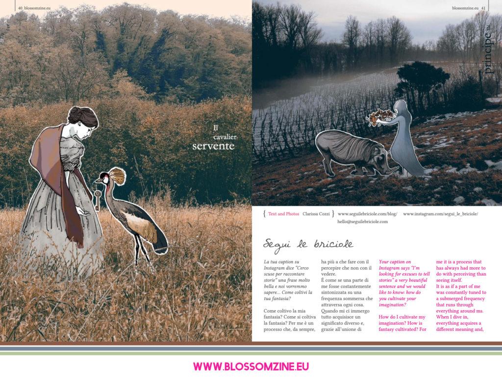 Le storie illustrate di Segui le briciole, intervista Blossomzine.