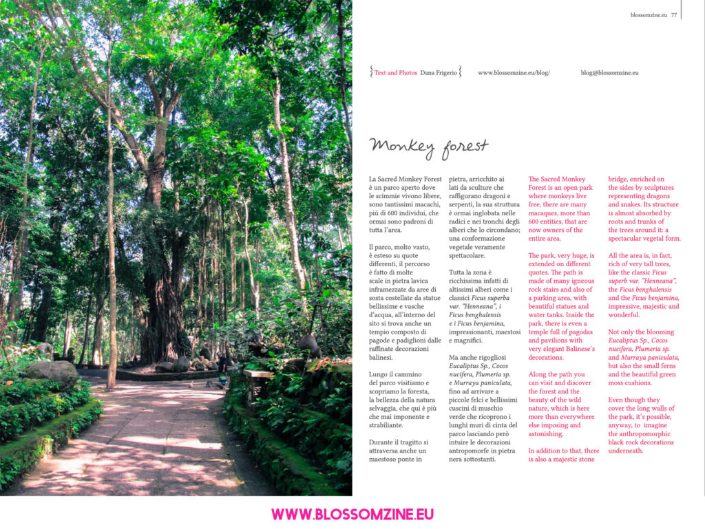 Sacred Monkey Forest, il parco delle scimmie