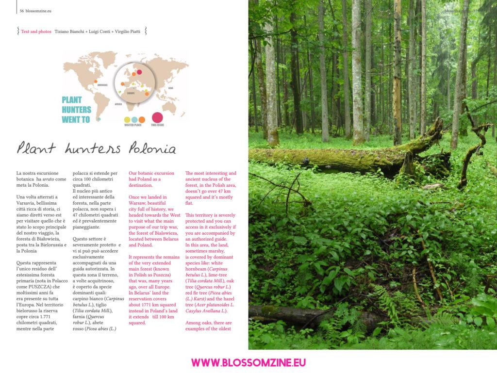 Plant hunters Polonia