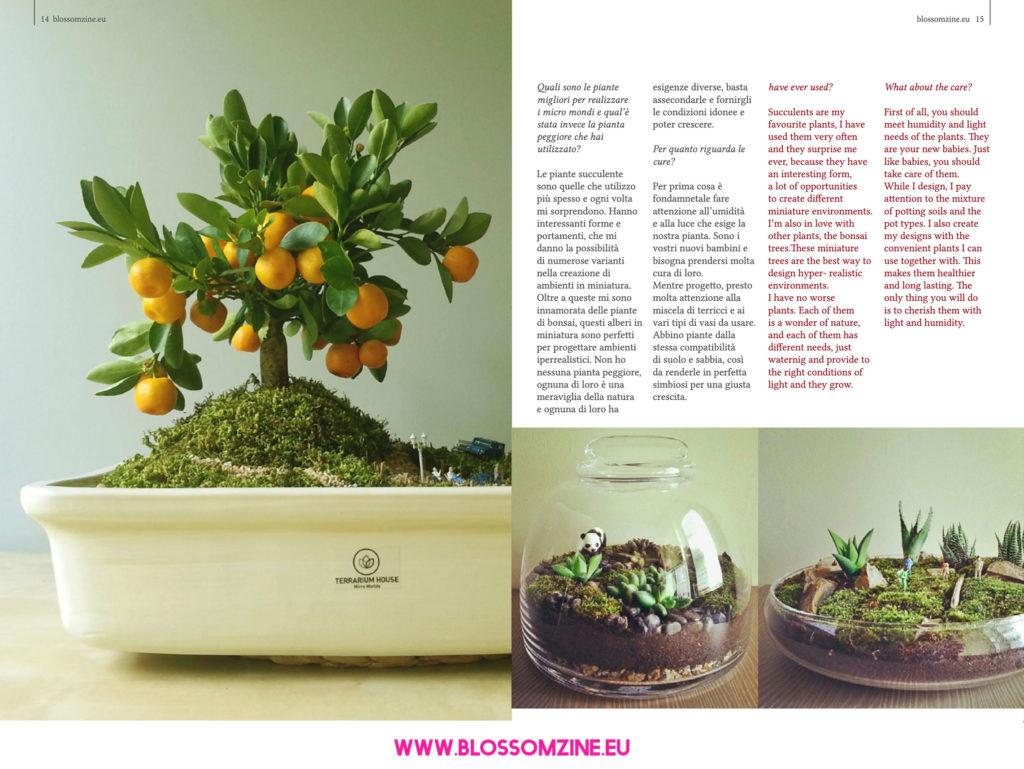 Terrarium onirici e micro mondi, intervista Blossomzine