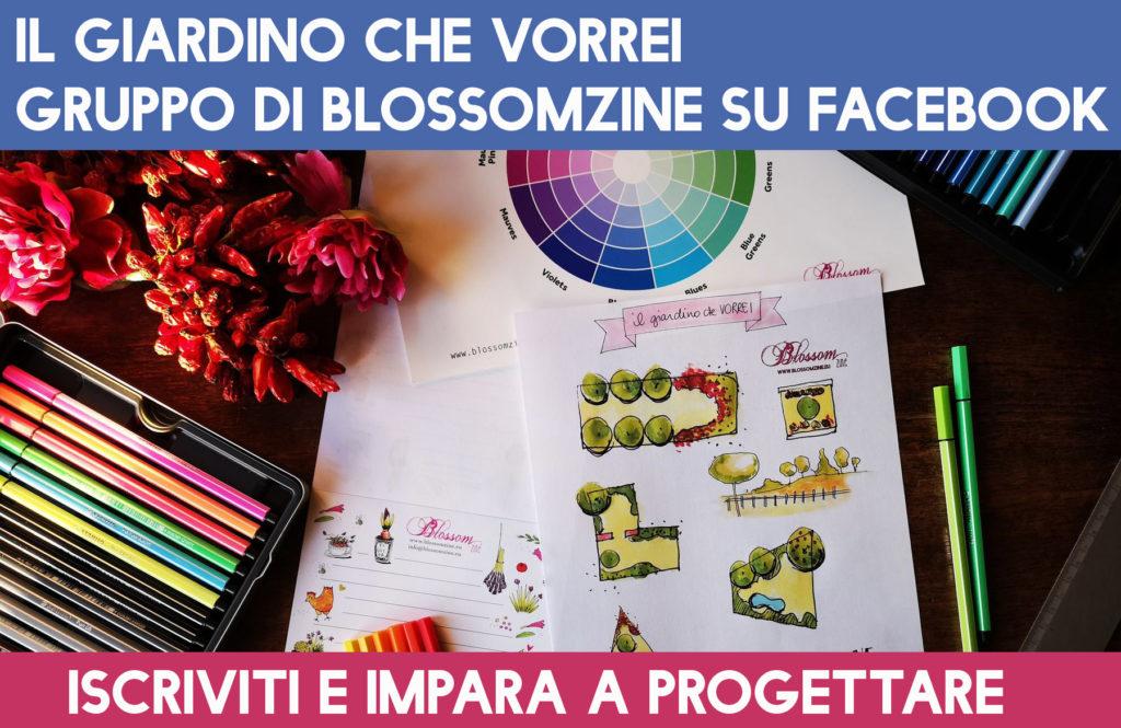 https://www.facebook.com/groups/progettareedisegnareungiardinoonline