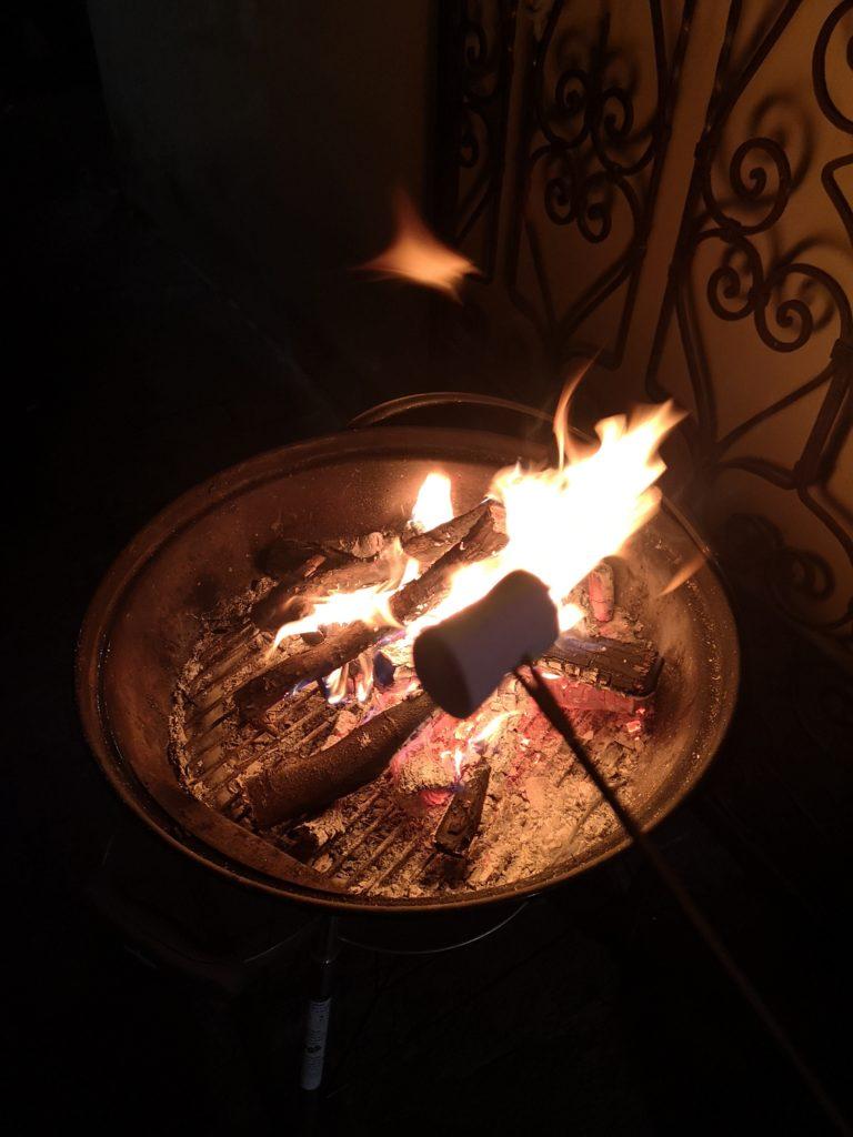 blossomzine BBQ invernale