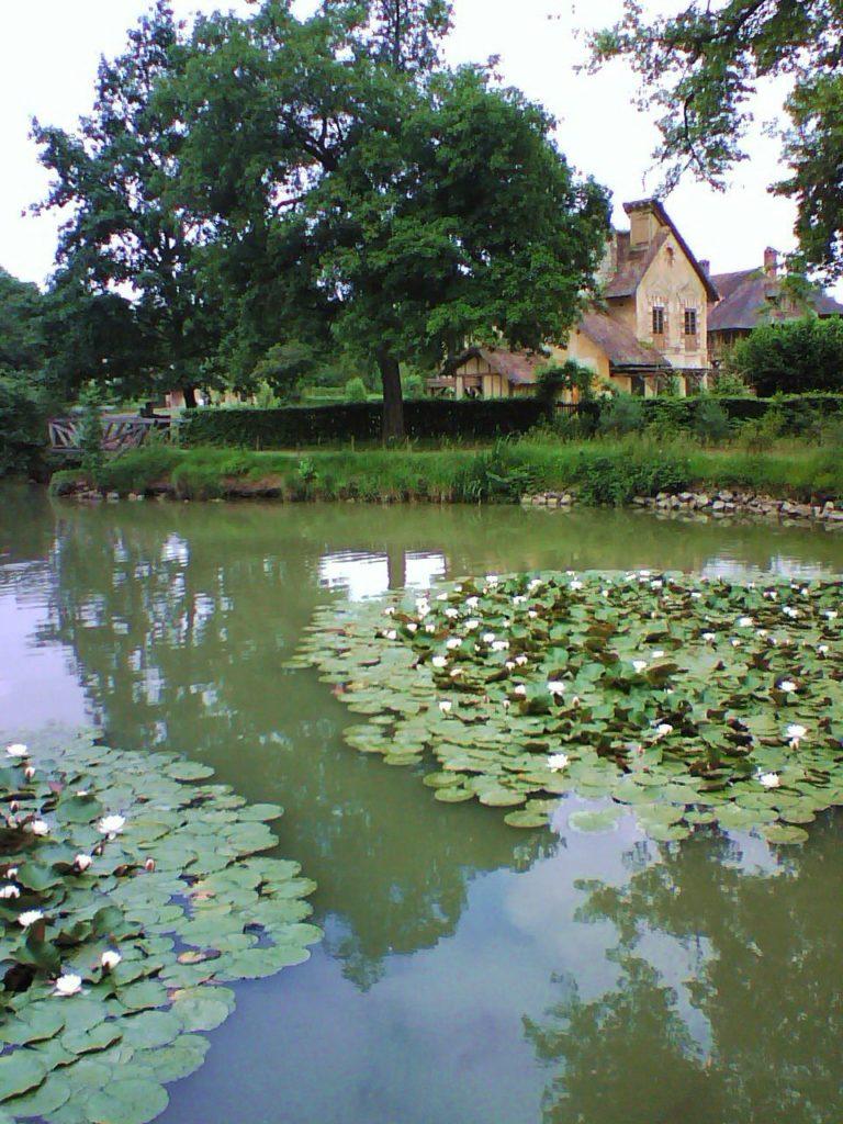 blossomzine petit trianon maria antonietta (1)