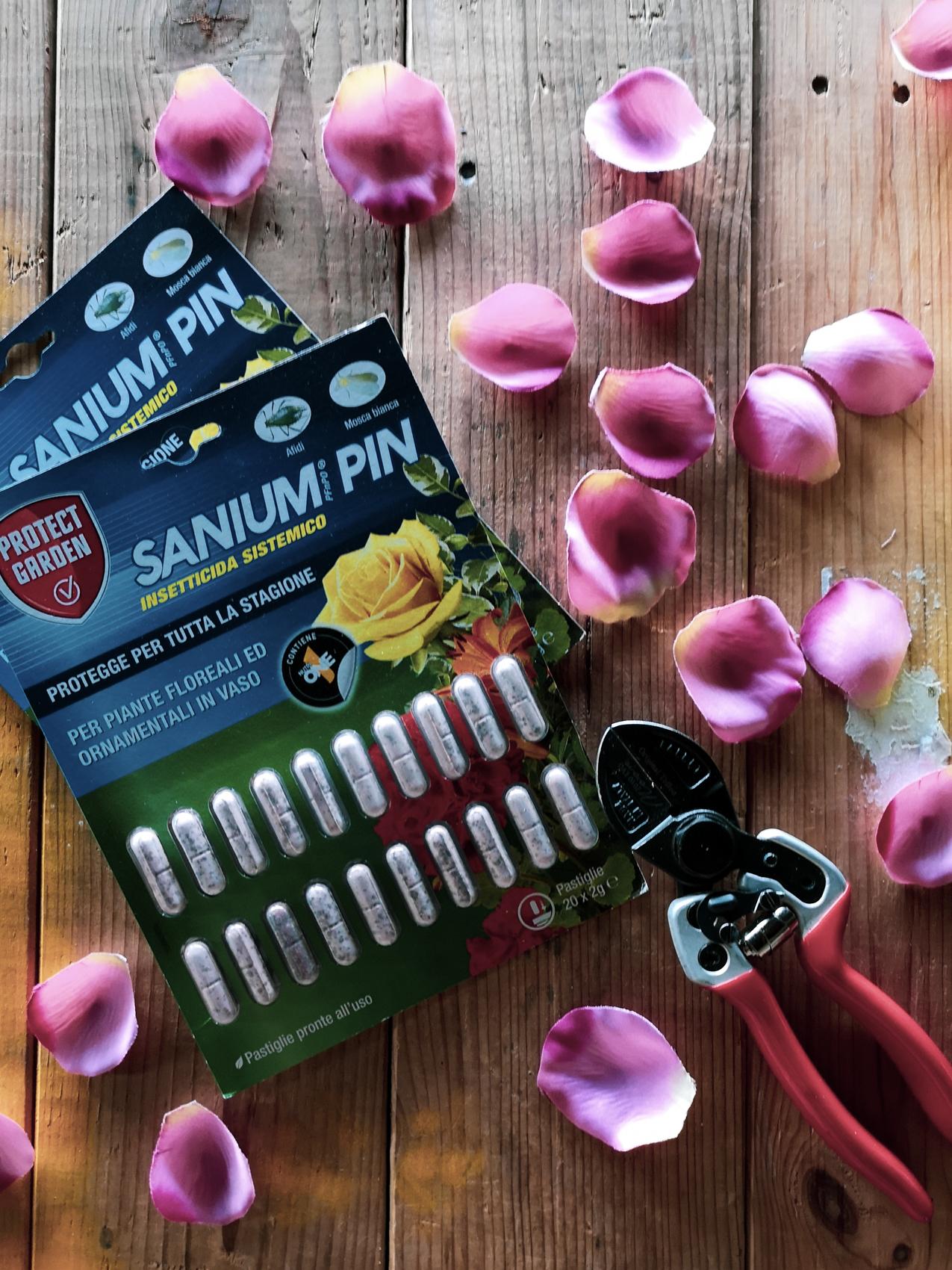 sanium pin per gli afidi