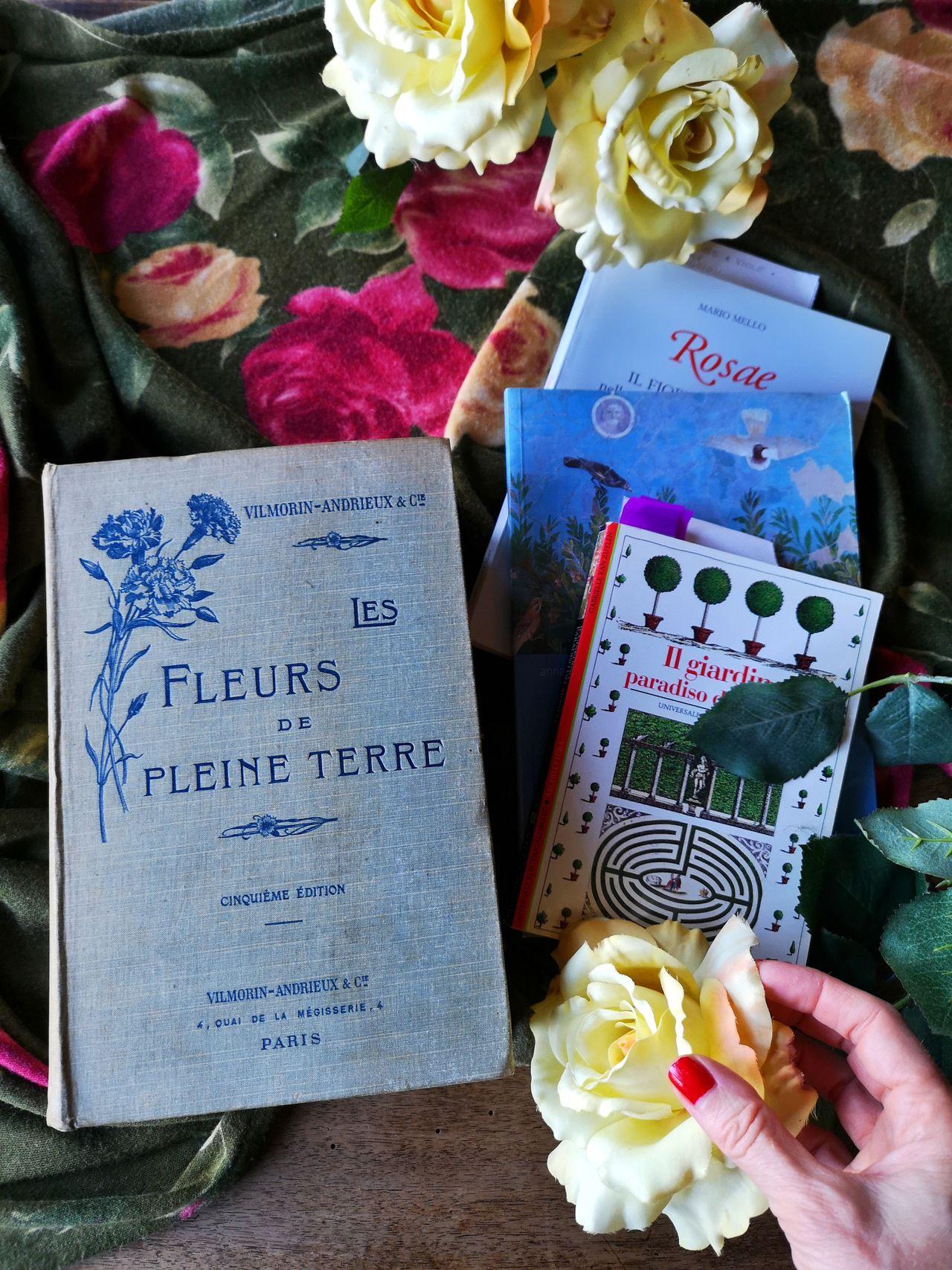 Blossomzine libri sulle rose da leggere